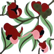 bloem 10442